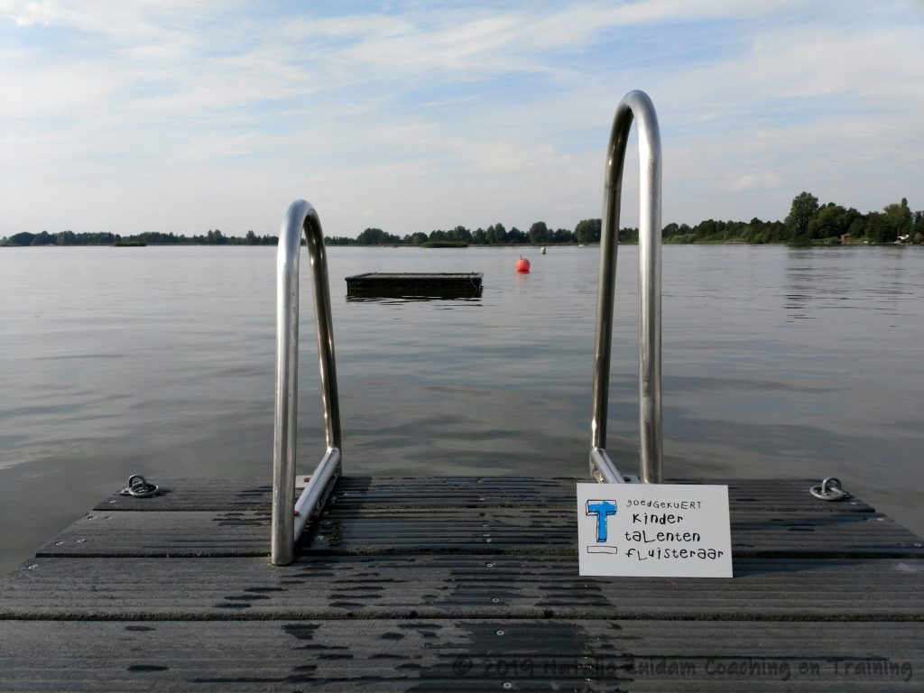 """Zwemtrap op een steiger aan een meer, met bordje """"goedgekuert kindertalentenfluisteraar"""""""